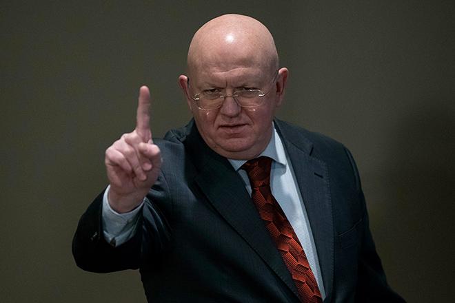 Политик Василий Небензя