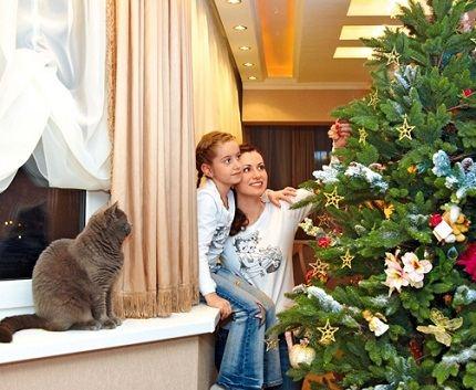 Анна Ковальчук любит дом и уют