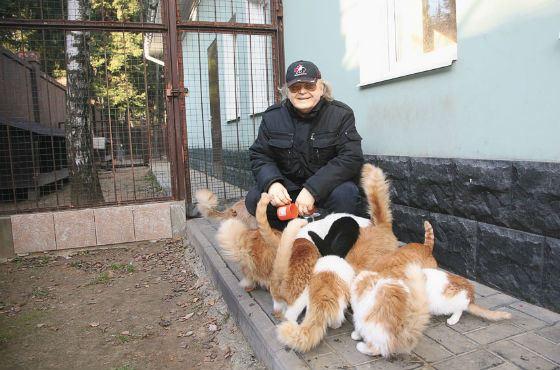Юрий Антонов – известный кошатник
