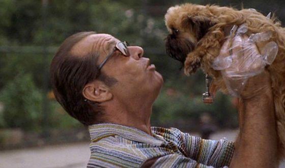 «Лучше не бывает»: Джек Николсон и собака