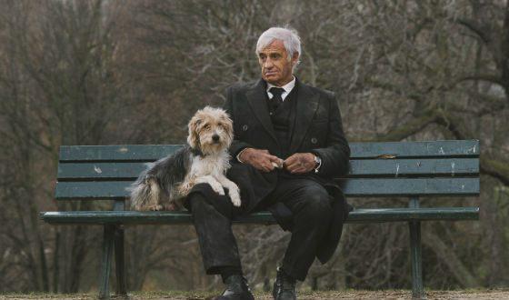 «Человек и собака» – первый фильм Бельмондо после инсульта