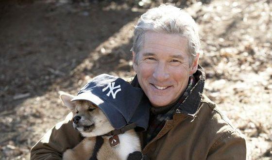 Ричард Гир подружился с щенком, игравшим молодого Хатико