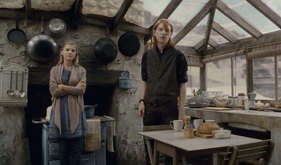 Клеманс Поэзи в фильме «Гарри Поттер и Дары смерти. Часть 1»