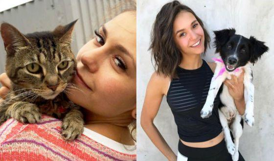 Питомцы Нины Добрев: кошка Линкс и пес Маверик