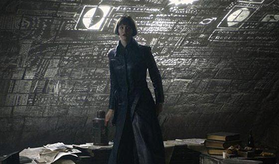 Кэтрин Уотерстон снялась в продолжении фильма «Фантастические твари»