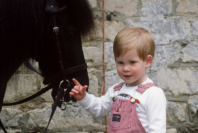 Принц Гарри в детстве